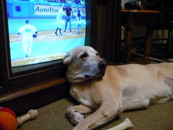 jesse watching yankees.jpg